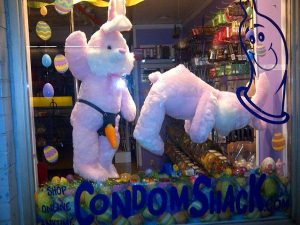 kinky bunny in shop window